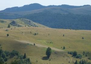 Peisaj la Muntele Baisorii