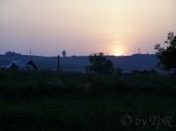 Apus (sunset)