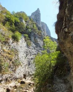 Peisaj in cheile Turzii