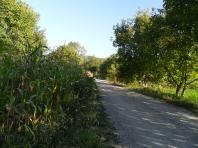 Drum acces (access road)