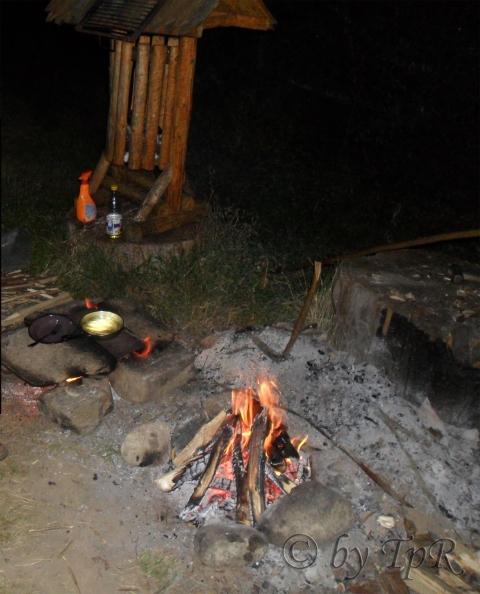 Peste prait pe vatra (fried fish)