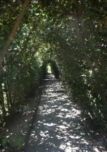 Alee in Gradina Botanica, Balchik