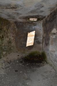 Cetatea de piatra