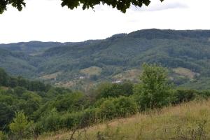Peisaj de pe drum spre cetatea Chioarului